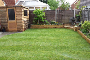 Image of the lawn in a small garden that was returfed by Green Stripe Lawn Care, Milton Keynes
